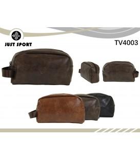 TV4003